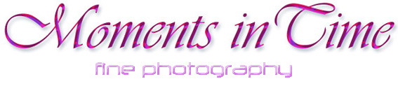 masonic ladies night photographer